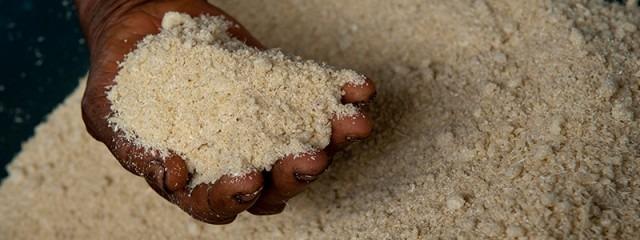 012---01---farinha-de-mandioca