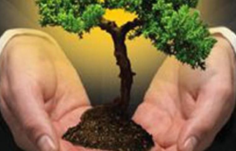 O marketing sustentável a seu favor