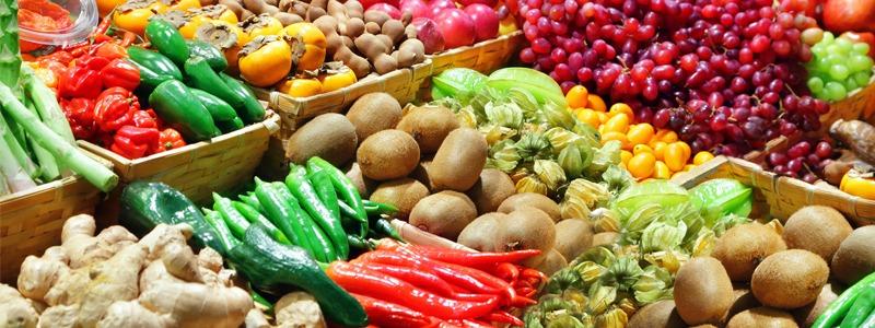 040---01---produtos-organicos