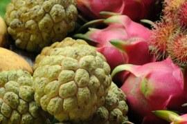 Frutas exóticas conquistam o mercado