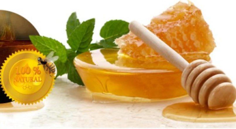 Setor deve garantir produção do mel seguro