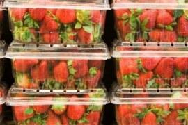 Frutas, verduras e legumes: cuidados com a mercadoria