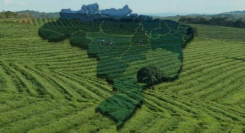 Agronegócio: atividade próspera no Brasil