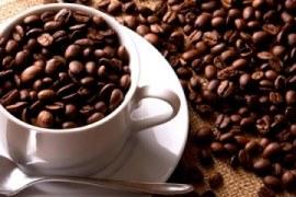 Norma permite identificar cafés de qualidade