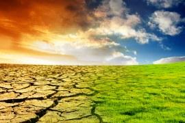 Mudanças Climáticas e Oportunidades de Negócios para Pequenas Empresas