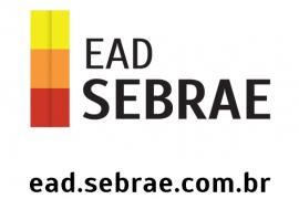 Cursos online gratuitos para empreendedores com o EAD do Sebrae