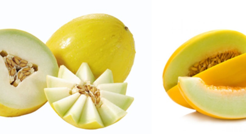 A produção e o mercado do melão