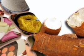 Derivados da mandioca como oportunidades de negócios