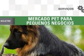 Boletim: Mercado pet para pequenos negócios