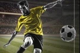 Sebrae/DF lança publicação para lojistas sobre Copa 2014