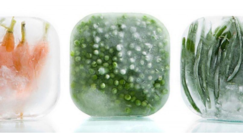 Alimentos congelados: a preferência pelos práticos e saudáveis