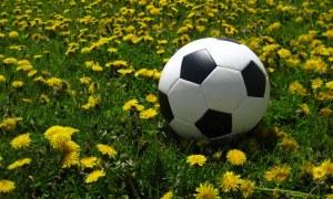 Estrangeiros que visitaram o Brasil na Copa querem voltar
