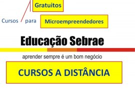 CURSOS A DISTÂNCIA E GRATUITOS DO SEBRAE, PARA CAPACITAR EMPRESÁRIOS DE MICROEMPRESA