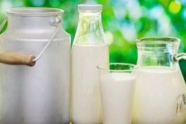 Tendência de mercado: leite com baixo teor de lactose