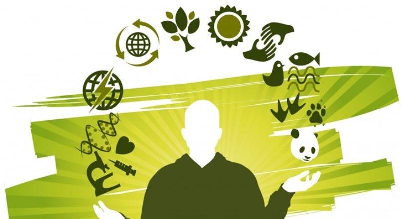 O lucro nas empresas sustentáveis