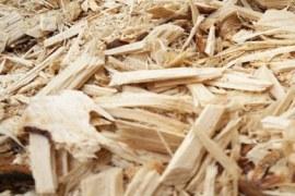 Resíduos de Madeira do Setor Moveleiro: Oportunidades em Coleta e Reciclagem