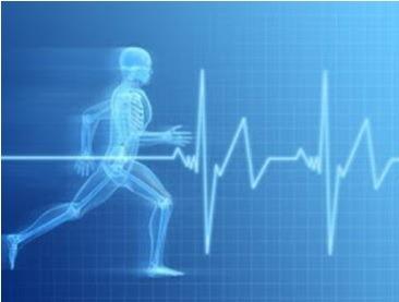 Medicina Esportiva 2