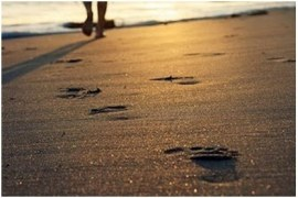 Em 2014, Moda Praia será fenômeno de vendas no mercado