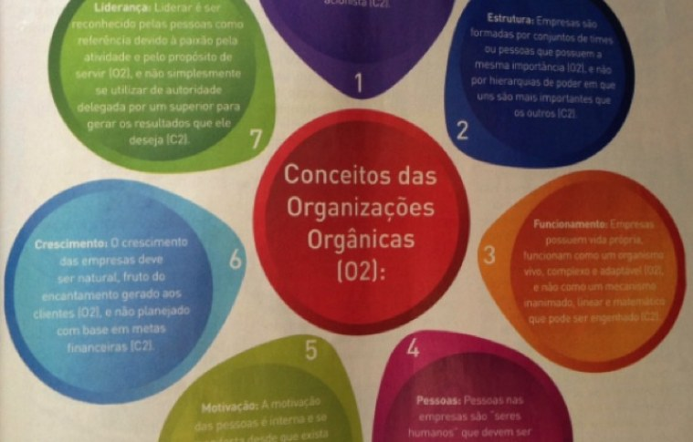 Organizações Orgânicas: um novo paradigma de administração