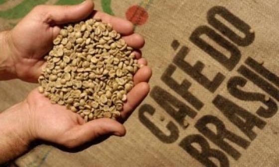 sebrae mercado, Produção de cafés certificados cresce no Brasil