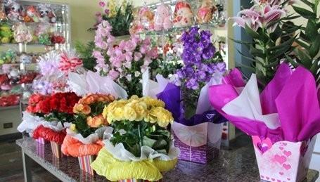sebrae mercados, flores como empreendimento de sucesso