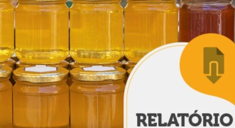 RELATÓRIO INTELIGÊNCIA – Caminho do mel até o consumidor