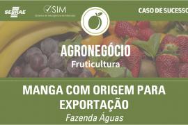 [Caso de Sucesso – Fruticultura] Exportação de Manga
