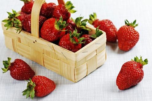 sebrae mercados, cultivo de morangos, oportunidade de negócios