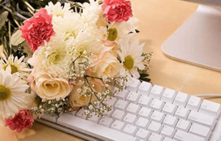 Como criar uma floricultura virtual