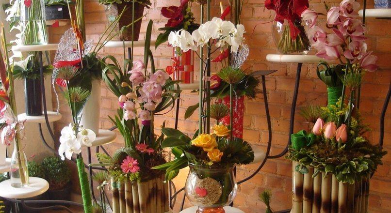 Transforme sua floricultura e impressione