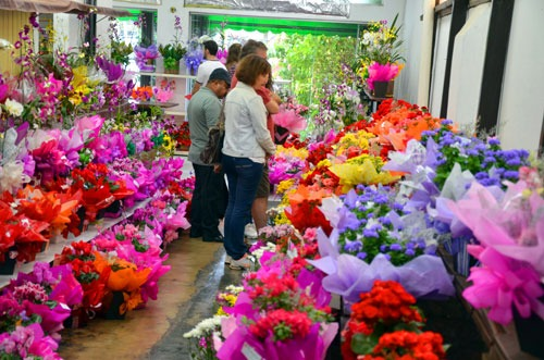 sebrae mercados, floricultura, maneiras de empreender