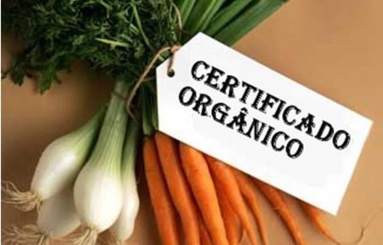 A importância da certificação de produtos orgânicos