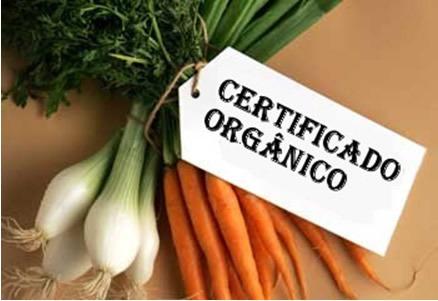 sebrae mercado, certificação de produtos orgânicos.