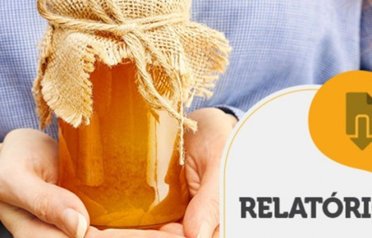 RELATÓRIO INTELIGÊNCIA – Investimento em flores para diferenciação de mel