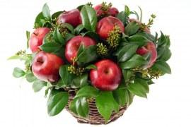 HORTITEC 2014 – A crescente tendência do cultivo de frutas ornamentais.