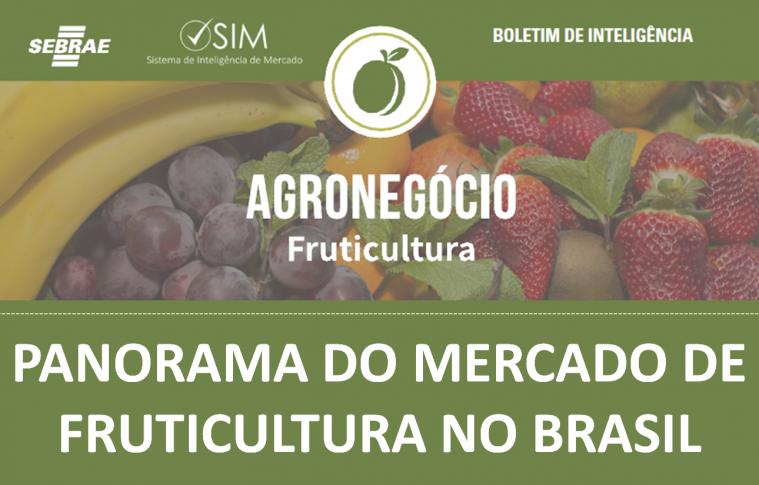 Boletim – Panorama do Mercado de Frutas no Brasil