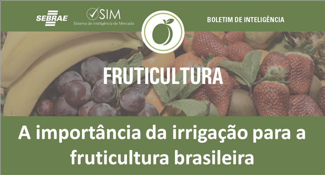 irrigação fruticultura