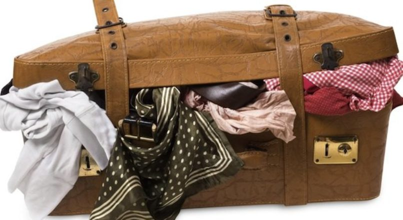 Mercado de manutenção e higienização de malas de viagem