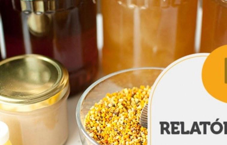 RELATÓRIO INTELIGÊNCIA – Nicho farmacêutico da apicultura