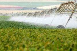 A importância da água para a vida e para os negócios