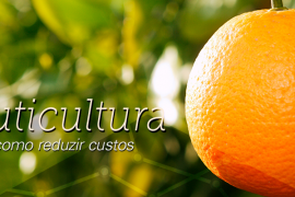 Clipping Fruticultura