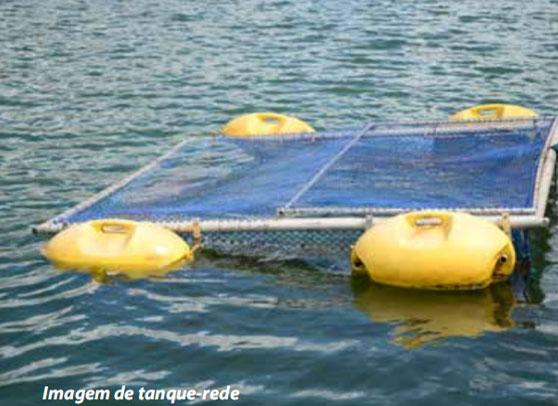 Sistema superintensivo de produção na piscicultura