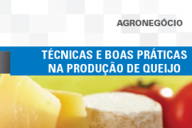Boletim- Técnicas e boas práticas na produção de queijos