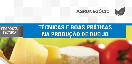 tecnicas-producao-queijo