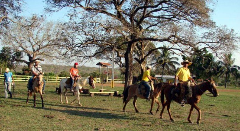 Turismo rural apresenta grande oportunidade de negócios