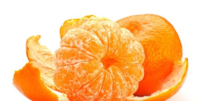 sebrae mercados, cultivo e mercado da tangerina