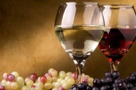 Produção de vinhos e espumantes no brasil