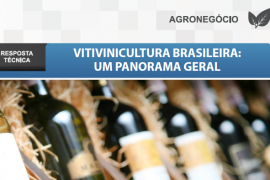 Boletim- Vitivinicultura Brasileira: um panorama geral