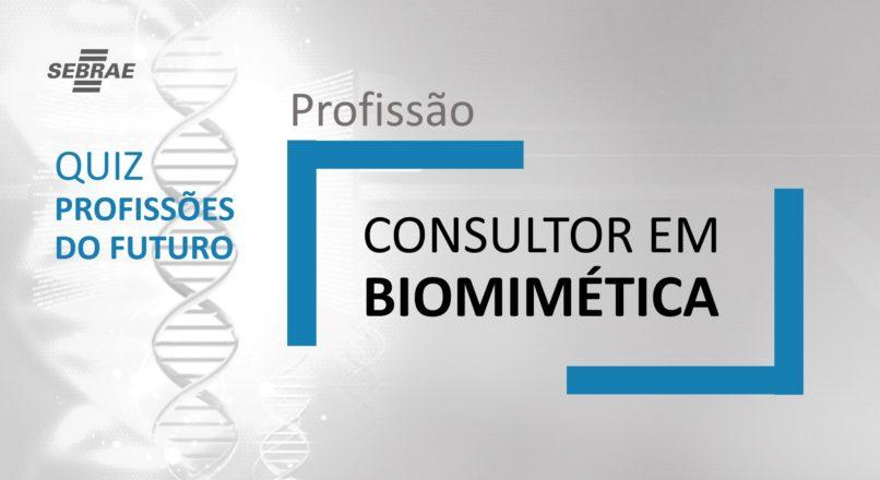 Consultor em Biomimética  – O que faz?