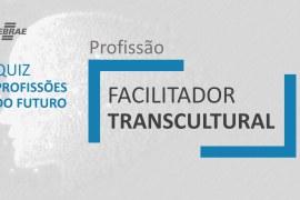 Facilitador Transcultural – O que faz?